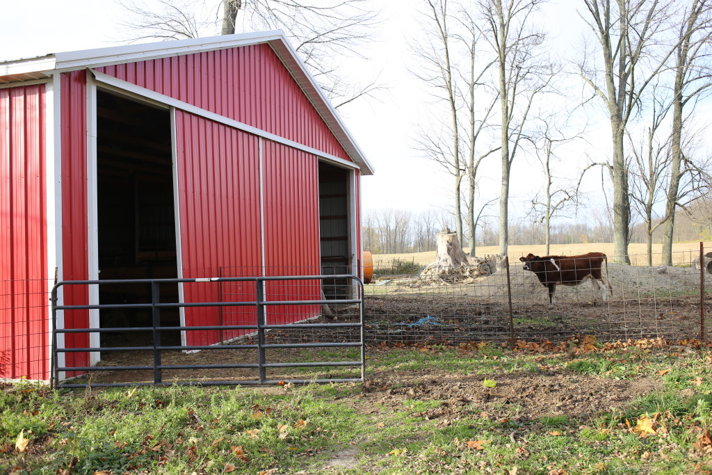 Advantages Of Pole Barns For Livestock